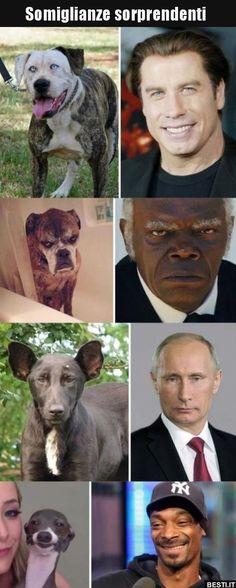 Somiglianze sorprendenti..