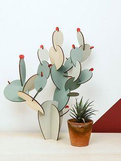 In unserer Top 10 zeigt sich der Kaktus von seiner zahmen Seite