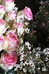 En el estudio de Brumalis: Flores muy especiales