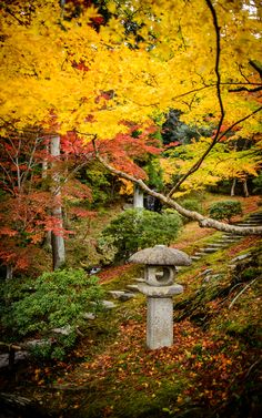 An autumn scene at the Shugakuin Imperial Villa (修学院離宮) in Kyoto Japan.
