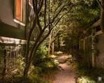natural gravel pathway with uplights
