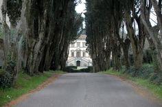Panorama Villa Belvedere Crespina