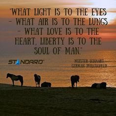 """""""What light is to the eyes…"""" #StandardProducts #Montreal #Quebec #Ontario #Toronto #Ottawa #Alberta #Calgary #Vancouver #BC #Horse #Sundown #Sunrise #Instagood #PicOfTheDay #Wisdom #Quotes"""