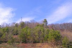 Our local hike - Rogersville, TN - town knob. Mountaineering, Knob, Hiking, Mountains, City, Pictures, Travel, Walks, Photos