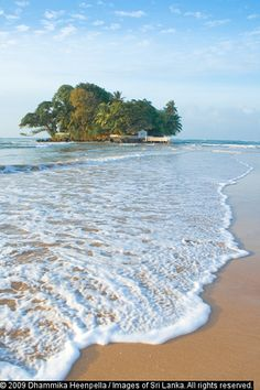 Taprobane Island. Sri Lanka