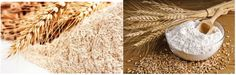 Wheat: Health Benefits, Side Effects, Nutrition Facts, Fun Facts and History Side Effects, Healthy Choices, Health Benefits, Fun Facts, Grains, Nutrition, History, Food, Historia