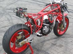 "ducati ""Bob Brown"" tt1 - Google Search"