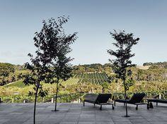 6 Wine Hotels to Visit Around the World