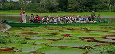 Peru Iquitos. foto de Google