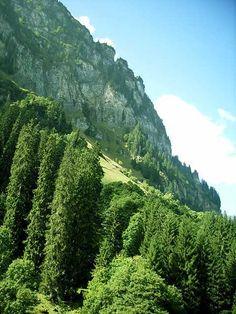 Mountains :: Bulgaria. Pirin Mountains