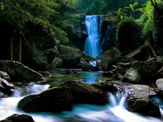 Gorgeous, scenics, mountainous, waterfall and rocky river