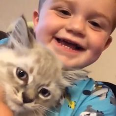 Awww so cute kitty meow meow Cute Funny Animals, Cute Baby Animals, Animals And Pets, Cute Cats, Funny Cats, Video Chat, Amor Animal, Funny Cat Videos, Cats And Kittens