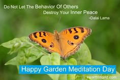 Happy Garden Meditation Day !! . Let Silence Take You to The Core of Life. - Rumi