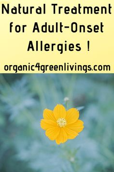 Natural and home remedies for adult-onset allergies. How allergies develop, facts, treatments, symptoms, how to diagnose for seasonal and food allergies. Seasonal Allergies, Food Allergies, Eating Healthy, Healthy Life, Home Remedies, Natural Remedies, Increase Blood Pressure, Allergy Symptoms, Be Natural