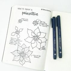 1,530 vind-ik-leuks, 15 reacties - Liz • Bullet Journal (@bonjournal_) op Instagram: 'How to draw a poinsettia! This one is hard, so I recommend trying it all in pencil before inking…'