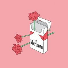 "60 Likes, 2 Comments - S T R E B E N D E (@strebende) on Instagram: ""Thinking about Thinks. . . . . . . #rose#flower#malboro#grunge #tumblr #zigarette…"""