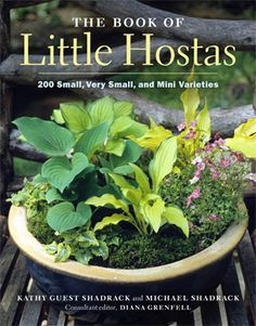 The Book of Little Hostas--