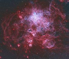 "11 отметок «Нравится», 2 комментариев — Astronomy Fans (@astronomy_fans.hq) в Instagram: «""The Tarantula Nebula is more than a thousand light-years in diameter, a giant star forming region…»"
