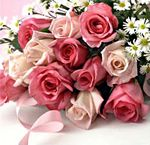 12 Pink Roses in Hyderabad