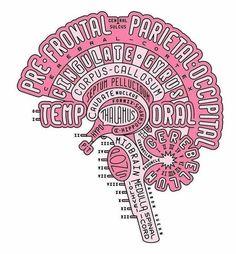 Imagem de brain, medicine, and medicina
