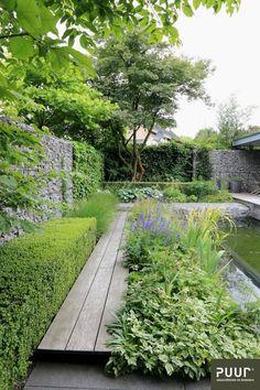 Zwemvijver centraal in stadstuin - PUUR groenprojecten Garden culture; Garden Design Images, Modern Garden Design, Landscape Design, Modern Design, Back Gardens, Outdoor Gardens, City Gardens, Indoor Garden, Low Maintenance Garden