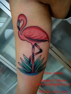 traditional flamingo tattoo