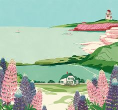Prince Edward Island for Canadian Living Magazine Illustration by Jeannie Phan PEI, the province with beautiful rolling landscapes, is the home to Anne of Green Gables and is famous lupine. Landscape Illustration, Botanical Illustration, Travel Illustration, Anne With An E, Magazine Illustration, Prince Edward Island, Anne Of Green Gables, Freelance Illustrator, Wall Collage