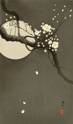"Flowering Plum and Moon by Ohara Koson.Ohara Koson – was a Japanese painter and printmaker of the late and early centuries, part of the shin-hanga (""new prints"") movement. Japanese Painting, Chinese Painting, Chinese Art, Ohara Koson, Grand Art, Art Asiatique, Art Japonais, Japanese Prints, Japan Art"