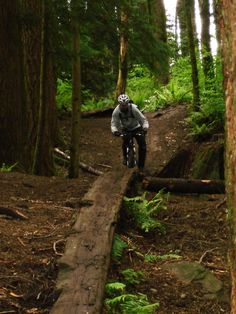 Galbraith Mountain is a 30 mile multiple route trail located near Bellingham, Washington and is rated as difficult. The trail is primarily used for mountain biking & trail running and is accessible year-round.