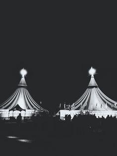 I love the circus.