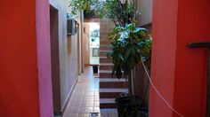 Pasillo acceso habitaciones Cuba, Colonial, Windows, Ensuite Bathrooms, Double Bedroom, Kobe