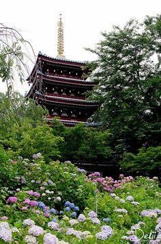 Hondoji temple, Chiba, Japan