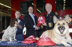 Firefighters deploy pet oxygen masks