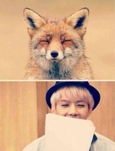 "Exo - Sehun  ""What does Sehun say?"""