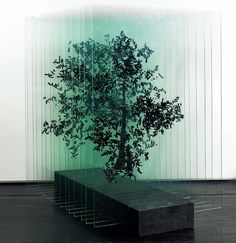 Using delicate materials like layers of glass or paper, artist Ardan Özmenoğlu redefines everyday objects in her visually complex sculptures. In these tree sculptures, the Turkish artist breaks the object down into rows of hand-painted glass. A single sheet appears to be completely abstract, however, by combining the fragmented parts into repetitive rows, she gives new life to the tree which changes appearance based on the position of the viewer.