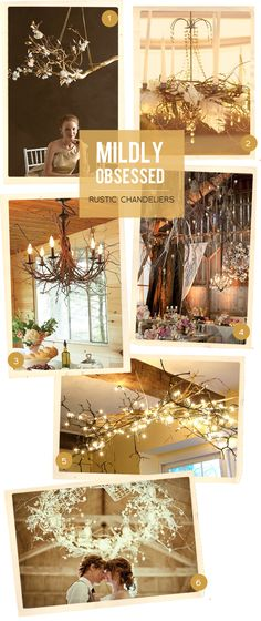 Mildly Obsessed/Rustic Chandeliers.  I made something like this for Christmas. I took a tree branch spray painted it silver. Hung it from the ceiling over my dining room table and hung Chrystal's from it. It was beautiful...