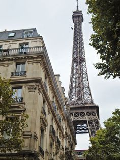 view of the eiffel tower from the rue de l'universite