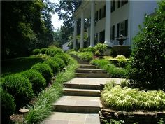 Formal Walkway, Front Walkway  Walkway and Path  Sunrise Landscape and Design  Sterling, VA
