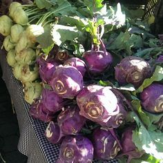 Green & purple #kohlrabi in #Manhattan! #farmersmarketnyc via restaurantgroupie on Instagram at Union Square Greenmarket