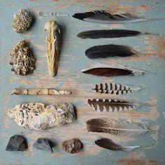 find ting i samme kategori og lav et billede/kollage/samling Wabi Sabi, Pot Pourri, Deco Nature, In Natura, Nature Collection, Arte Floral, Natural Forms, Dream Catchers, Bird Feathers