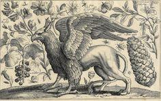 griffon, griffin, gryphon, chimera, monster, medieval, Middle Ages, beast, vapor, rabbit-fish, vapour, winged lion, mythical, mythological,
