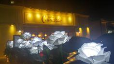 LED플라워 설치사례 LED플라워F01 화이트 LED플라워와 넝쿨이어울려 커피숍앞이 이쁘게 단장되었...