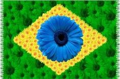 cute bandeira brasileira.  The Brazilian flag comprised of flowers.    Google Image Result for http://images03.olx.com.pe/ui/18/82/59/1328278851_310587359_1-CLASES-DE-PORTUGUES-do-BRASIL-Personalizadas-Intensivas-Grupales-Surco-Surco-san-Borja.jpg