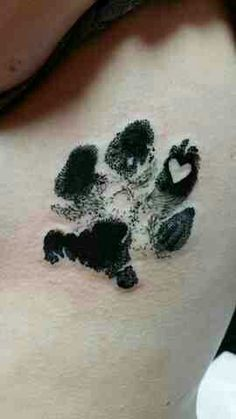 can't wait to get our bbg Sky's paw print tatted on my foot soon <3