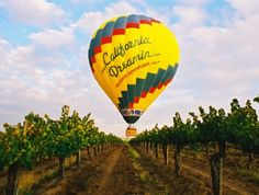 Let your spirit soar on this one-of-a-kind wine country tour that you'll never forget. Float above the vineyards, exploring Temecula Wine Country with an incredible birds eye view.