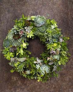 Life after the holidays may be a bit glum, but the piles of dead trees and wreathes on the curb can make it downright depressing. We don't have a tree this year, but we did get a traditional wreath with evergreen, pine cones and juniper berries. It's beautiful, but next year we might opt for this gorgeous wreath of succulents, which will live on long after the gloomy weeks of January fade...