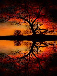Reflection @ work