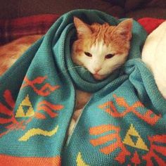 Cat Legend Of Zelda Scarf - #HyruleWarriorsLegends