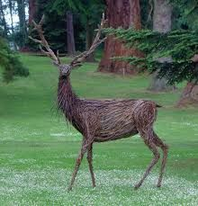 Wicker Sculpture - Scone Stag by Trevor Leat. Might need a second look to see that this isn't actually a real deer! Driftwood Sculpture, Driftwood Art, Sculpture Art, Sculpture Ideas, Garden Sculptures, Garden Whimsy, Garden Art, Garden Ideas, Living Willow