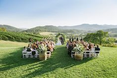 Alfresco vineyard ceremony with Blue Ridge Mountain views North Garden, Virginia Wineries, Blue Ridge Mountains, Mountain View, Wine Country, Lush, Vineyard, Dolores Park, Scenery